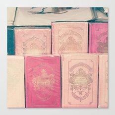 Paris books Canvas Print
