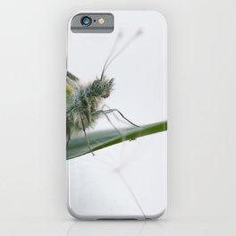 Butterfly dandelion iPhone Case