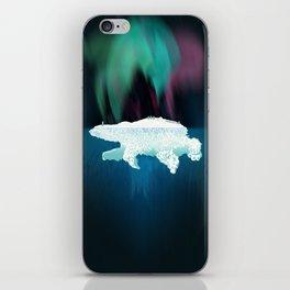 Polar Ice iPhone Skin