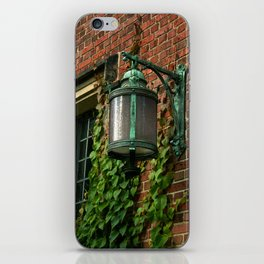 Light and Ivy iPhone Skin