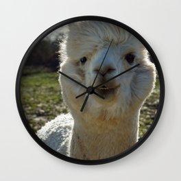 Smiling Llama Wall Clock