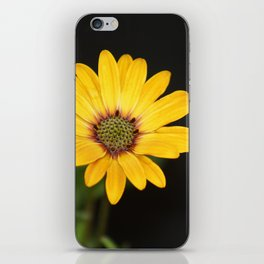Big Yellow iPhone Skin