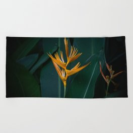 Orchids yellow Beach Towel