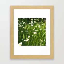 Flowery meadow drawn Framed Art Print