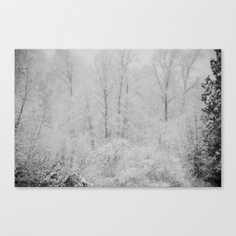 Crystallized Water Canvas Print