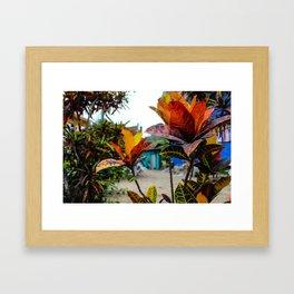 Dreamy Mexican Garden Framed Art Print