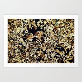 Magnesium Platino Cyanide Crystals Art Print