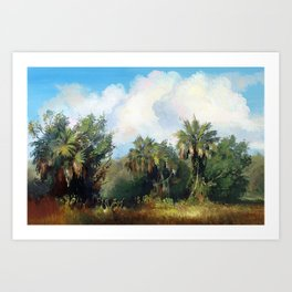 In the Everglades Art Print