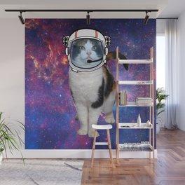 Space cat Wall Mural