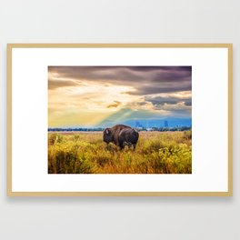 The Great American Bison Framed Art Print