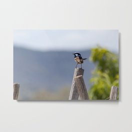 Tiny strength Metal Print