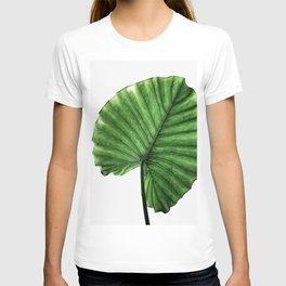Leaves 11 T-shirt