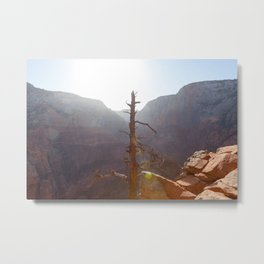 Tree High (Zion National Park, Utah) Metal Print