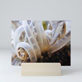 Sea Anemone Mini Art Print