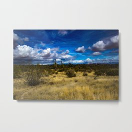 Blue sky desert view Metal Print