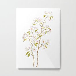 elegant white cherry blossom watercolor painting Metal Print