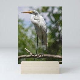 Great Egret - Utah Mini Art Print