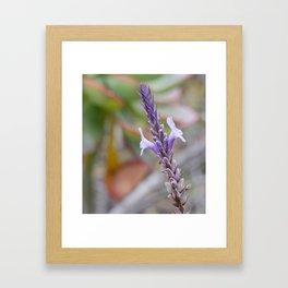 Lilac Symmetry Framed Art Print