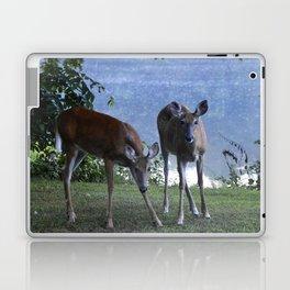 Grazing Deer Laptop & iPad Skin