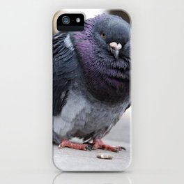 Mr Pigeon iPhone Case