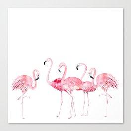 Flamingo Farm- Tropical Animal Bird World Canvas Print