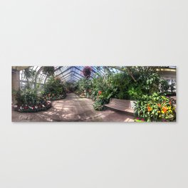 Vander Veer Conservatory Panoramic #4 Canvas Print