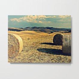 rotoballe - Italy Metal Print