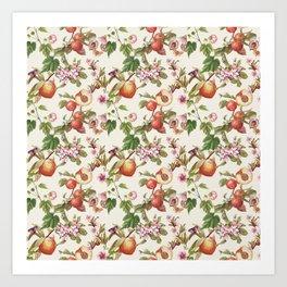 botanical fruits Art Print