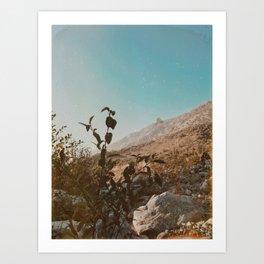 Forest Falls VIII Art Print