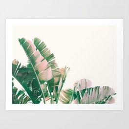 Tropical Banana Leaves, Nature Photography, Botanical Art Print