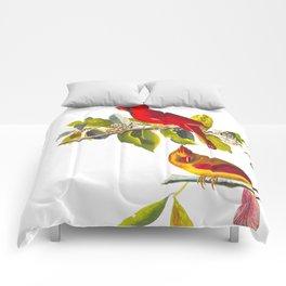 Cardinal Vintage Bird Illustration Comforters