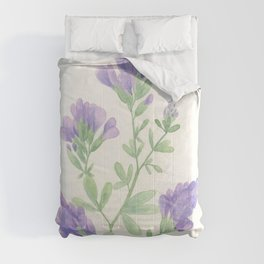 Alfalfa Comforters