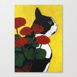 Cat Amongst the Geraniums 1 Canvas Print