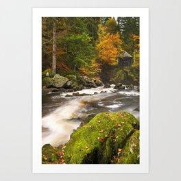 III - River through autumn colours at the Hermitage, Scotland Art Print