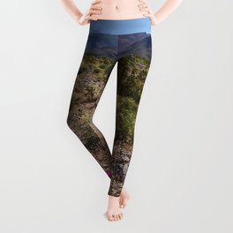 Painted Desert - V Leggings
