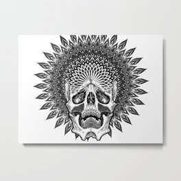 enlightenment Metal Print
