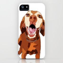 Beautiful Vizsla iPhone Case