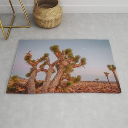 death valley ii / california desert Rug