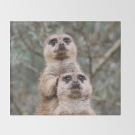 Meerkat_002_by_JAMFoto Throw Blanket