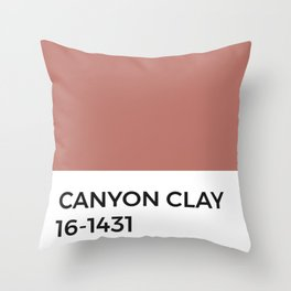 Canyon Clay • Pantone Swatch • Paint Chip • Warm Tones • Hues Throw Pillow