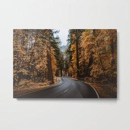 Autumn Forest Road II Metal Print