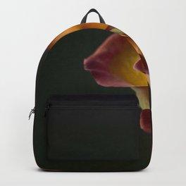 Rose in dark Backpack