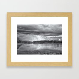 Birdland BW Framed Art Print
