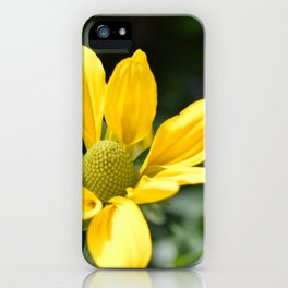 Happy Spring iPhone Case