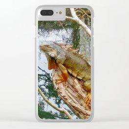Miami Iguana Clear iPhone Case