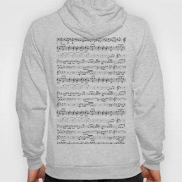 Musical Hoody