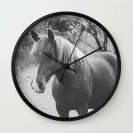 Horse III _ Photography Wall Clock