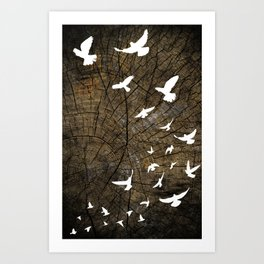 Birds on Wood Art Print