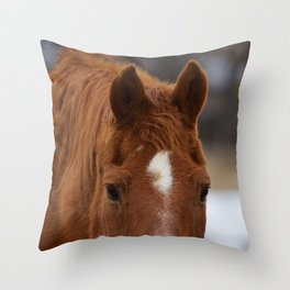 Red - The Auburn Horse Throw Pillow