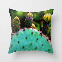Cactus In The Garden Throw Pillow